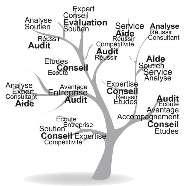 En quoi un expert comptable peut-il aider une entreprise